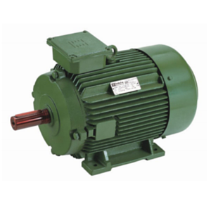 High Efficiency Standard Motors