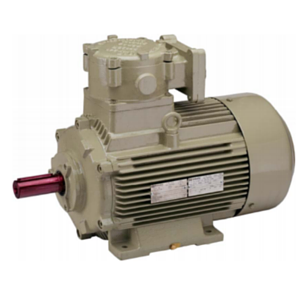Multi Speed Flameproof Motors For Gas Groups IIA & IIB AS PER IS-IEC 60079